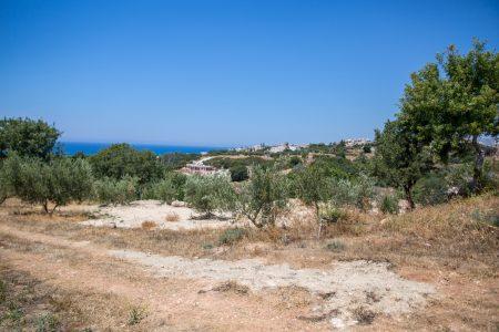 Правила левостороннего движения на основе Кипра