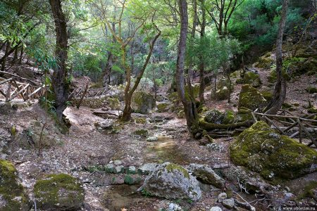 Долина бабочек в Петалудесе