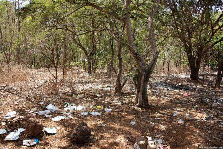 Искусство мусорить или мусор в Гоа