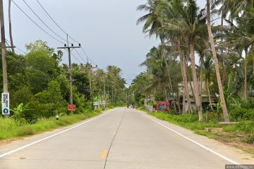 Аренда скутера на Пангане
